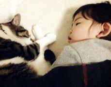 和猫咪一起睡觉好吗?